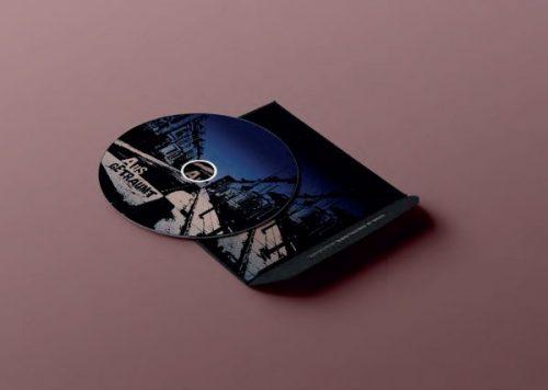 CD Artwork Raccoon